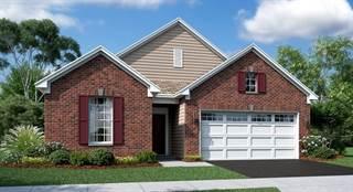 Single Family for sale in 2270 Indigo Drive, Algonquin, IL, 60102