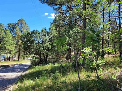 Lots And Land for sale in Valley View AV, Mayhill, NM, 88339