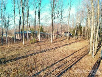Lots And Land for sale in 16 FREDERICK STREET, South Bruce Peninsula, Ontario
