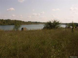 Land for sale in 1955 E Lakeville Road, Oxford, MI, 48371