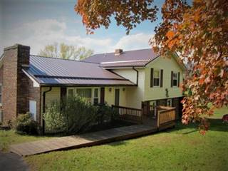Single Family for sale in 62 Lookout Ave, Hinton, WV, 25951