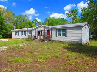 Residential Property for sale in 28433 RILEY HARRIS ROAD, Brooksville, FL, 34602
