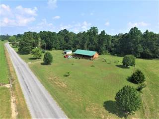 Residential Property for sale in 550 Jackson Hollow Rd, Minor Hill, TN, 38473