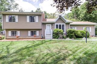 Single Family for sale in 307 South 4TH Street, Fisher, IL, 61843