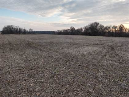 Farm And Agriculture for sale in 000 US Highway 136 West, Kahoka, MO, 63445