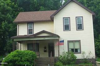 Single Family for sale in 422 Chicago, Savanna, IL, 61074