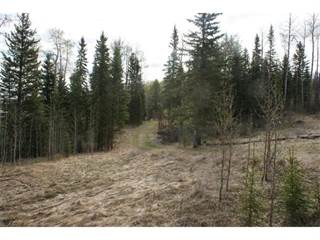 Land for sale in 41 James River CX, Rocky Mountain House, Alberta