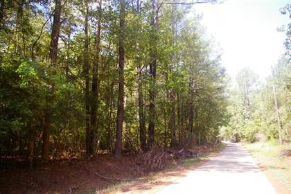 Lots And Land for sale in XXX Bobby Kennedy Road, Wesson, MS, 39654