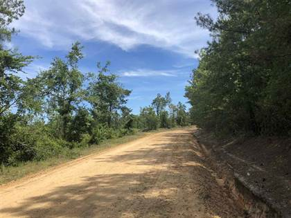 Lots And Land for sale in 1 HIGHWAY 14, Sallis, MS, 39160