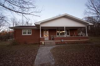 Single Family for sale in 000 Rosiclare Road, Rosiclare, IL, 62982