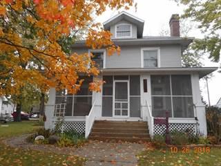 Single Family for sale in 409 North Van Buren Street, Litchfield, IL, 62056