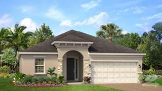 Single Family for sale in 165 Trinity Ridge, Davenport, FL, 33897