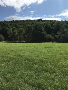 Lots And Land for sale in 0 State Highway 205, Laurens, NY, 13796