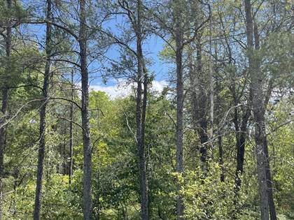 Lots And Land for sale in W North Down River Road, Grayling, MI, 49738