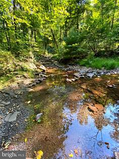 Lots And Land for sale in 21.56 Acres BIG ROUGH RUN, Brandywine, WV, 26802