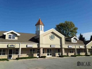 Comm/Ind for sale in 3409  STERNS, Lambertville, MI, 48144
