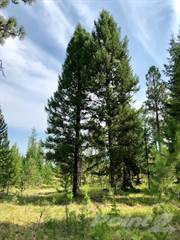 Land for sale in 39840 US Hwy 2, Libby, MT, 59923