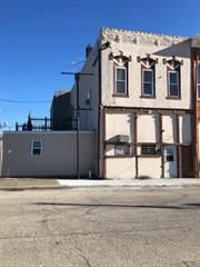 Multi-family Home for sale in 106 N Oak, Arcola, IL, 61910