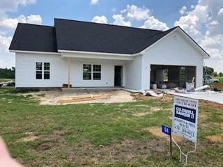 Single Family for sale in 94 Cole, Hawkinsville, GA, 31036
