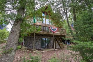 Single Family for sale in 2530 S FOREST LN, Cedarville, MI, 49719