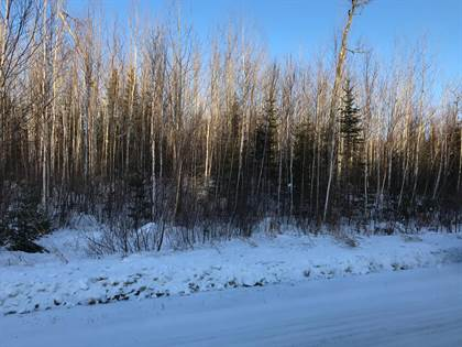 Lots And Land for sale in Tbd Longfellow Rd, Cook, MN, 55723