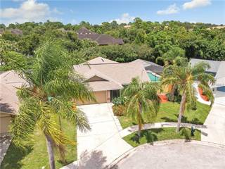 Single Family for sale in 2259 BLUE TERN DRIVE, Palm Harbor, FL, 34683