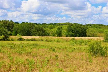 Lots And Land for sale in Tbd Elm Grove, Richland Springs, TX, 76871