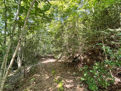 Lots And Land for sale in 00 Pine Lake Ridge Rd 43&44, Robbinsville, NC, 28771