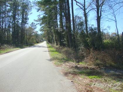 Residential Property for sale in 149 Co Rd 835, Buna, TX, 77612
