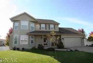 Single Family for sale in 504 Newcastle Drive, Mackinaw, IL, 61755