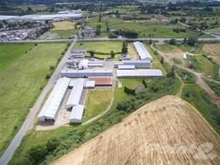 Farm And Agriculture for sale in 6681 GLOVER ROAD, Langley Township, British Columbia