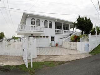Single Family for sale in KM HM 0.2 BARRIO LOS POLLOS CARR 0757, Patillas, PR, 00723