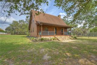 Single Family for sale in 4396 TURNER ROAD, Mulberry, FL, 33860