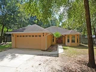 Single Family for sale in 25804 WESTMORELAND STREET, Sorrento, FL, 32776