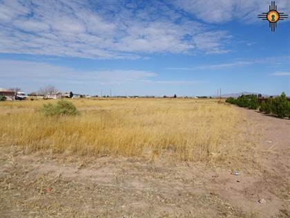 Lots And Land for sale in 00 Solana Road SW, Deming, NM, 88030