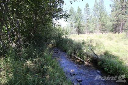 Lot/Land for sale in NHN Baldy Mountain View Road , Plains, MT, 59859