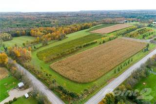 Farm And Agriculture for sale in 7 CENTRE Road, Hamilton, Ontario
