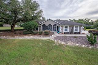 Single Family for sale in 28214 COUNTY ROAD 46A, Sorrento, FL, 32776