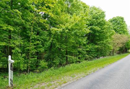 Lots And Land for sale in W P Avenue, Greater Texas Heights, MI, 49009