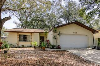 Single Family for sale in 2425 GROVE VALLEY AVENUE, Palm Harbor, FL, 34683