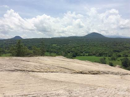 Farm And Agriculture for sale in Property of 79 hectares, located in Canas Dulces Liberia, Liberia, Guanacaste