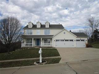 Single Family for sale in 6803 Silverstone Court, House Springs, MO, 63051