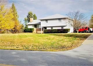 Single Family for sale in 1190 Skyline Drive, Cobden, IL, 62920