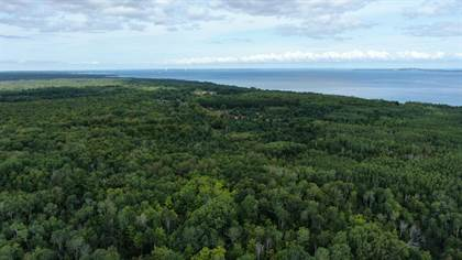 Lots And Land for sale in N Old Mackinaw Road 160 Acrers, Cheboygan, MI, 49721
