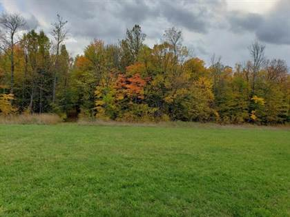 Lots And Land for sale in NEAR ENGSTROM RD, Bruce Crossing, MI, 49912