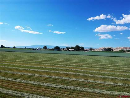 Farm And Agriculture for sale in 63118 Falcon Road, Montrose, CO, 81401