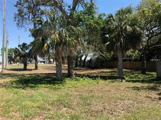 Comm/Ind for sale in 0 TAMPA ROAD, Palm Harbor, FL, 34683