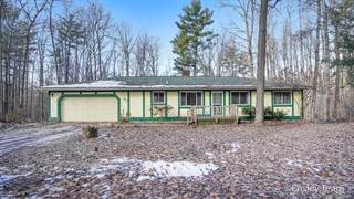 Single Family for sale in 6769 19 Mile Road NE, Greater Sand Lake, MI, 49319