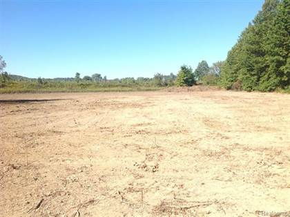Lots And Land for sale in 323 E Spring Street, Plymouth, MI, 48170