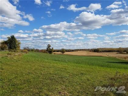 Farm And Agriculture for sale in 114 8TH CONC Road E, Flamborough, Ontario, L0R 1K0